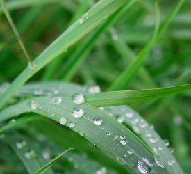 Met Éireann: Weather to turn unsettled from midweek