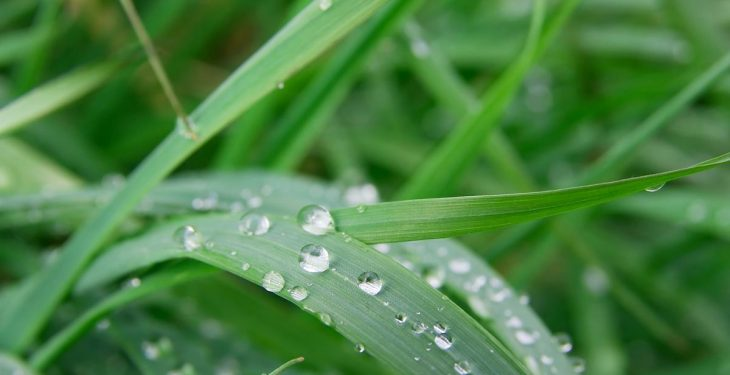 Rainfall warning issued for 18 counties