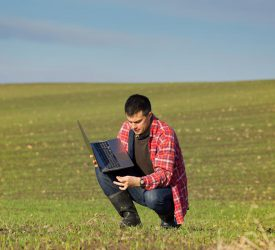 Carbon budgets 'sealing the fate' of young farmers – Macra