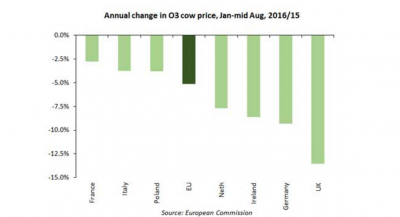 Annual change in O3 cow prices, January to mid-August 2016