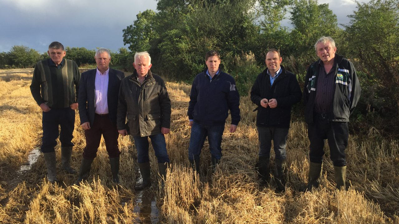 MEPs seek Government intervention for tillage farmers