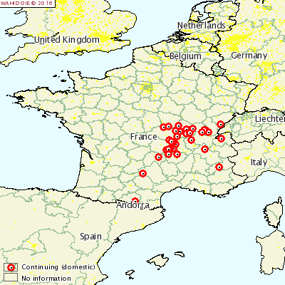 Heatmap of recent Bluetongue Outbreaks Source: OIE