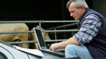 Fancy a career change? Check out the latest job offerings in the agri-sector