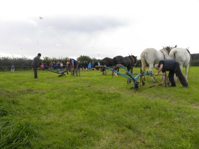 ploughing, horses