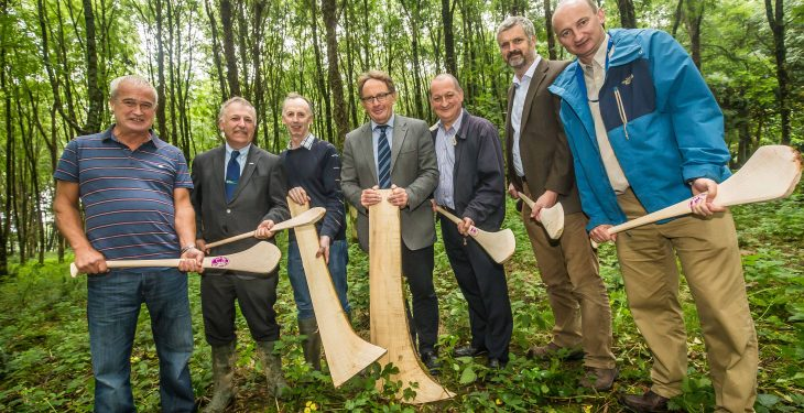 Harvesting of hurley butts starts in Johnstown Castle