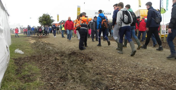 Crowds surge to Tullamore with 111,000 visitors on Ploughing Day Two