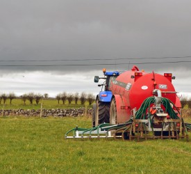 Nitrates Derogation: Deadline for applications tomorrow