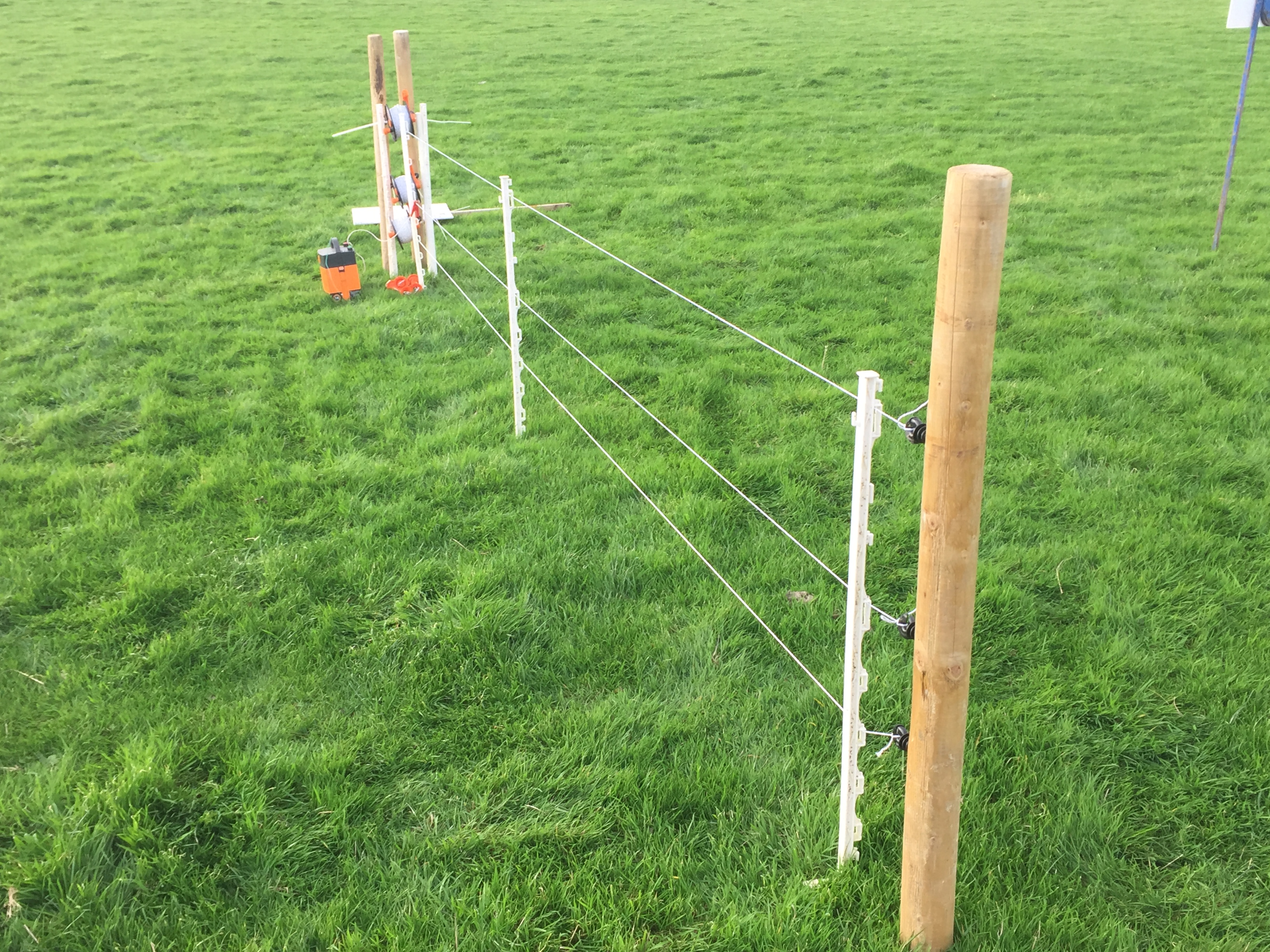 Pics Cost Effective Temporary Sheep Fencing Options On Show Electric Accessories 7 Strand Fence Wire Img 9279 Three Strands Of Poly And Plastic Posts