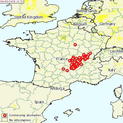 Heatmap of recent Bluetongue outbreaks Source: OIE