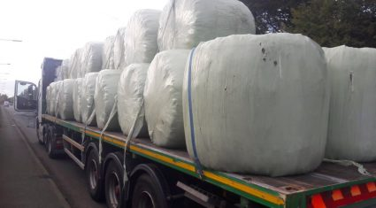 Pics: Haulier stopped for not having bales secured properly