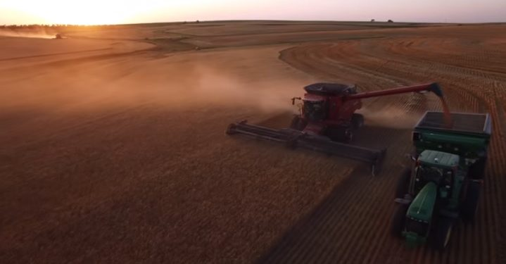 Video: Great footage of over 2,000ac of wheat being harvested in the US