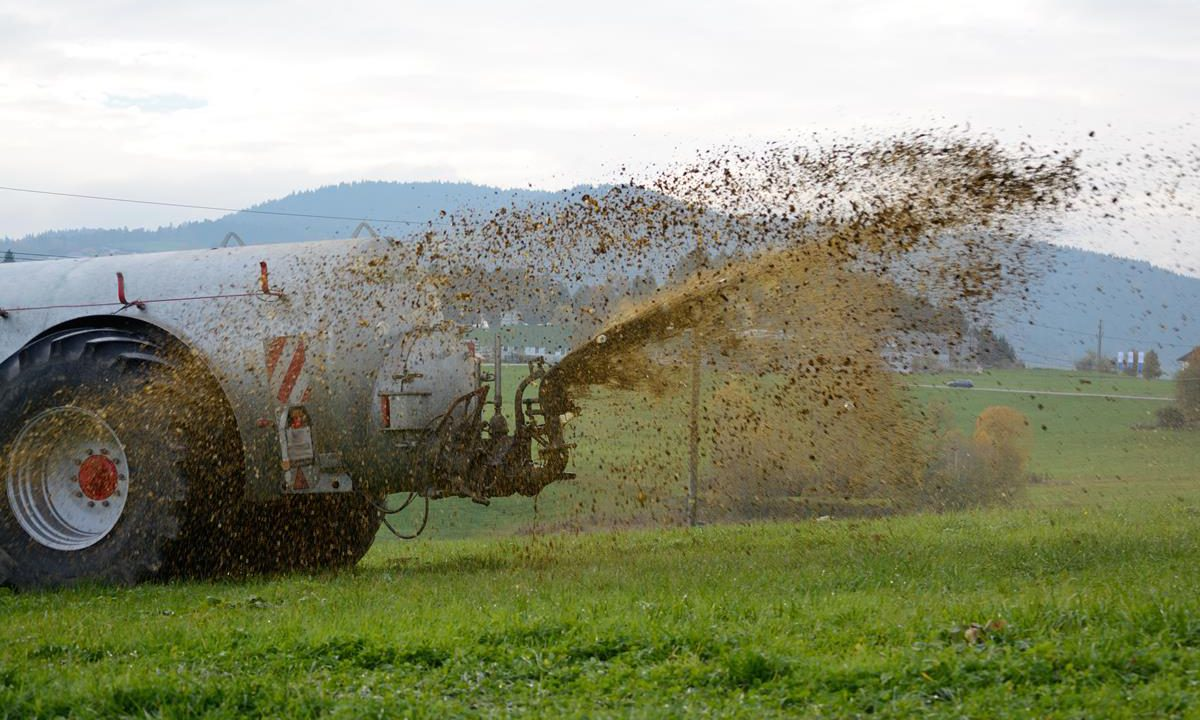 Creed and Coveney slammed for not arguing for slurry spreading extension