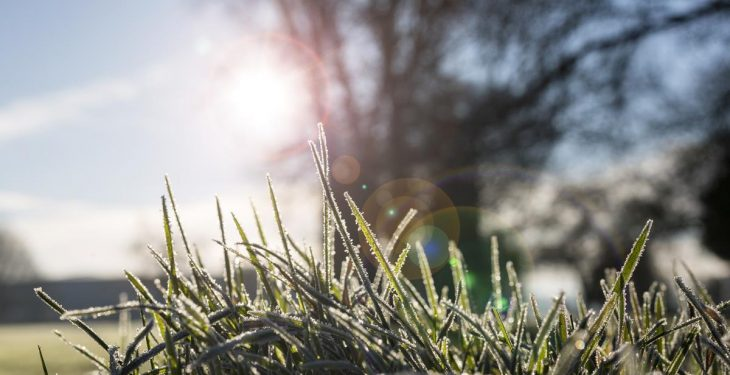 A dry and cold week ahead with widespread frost