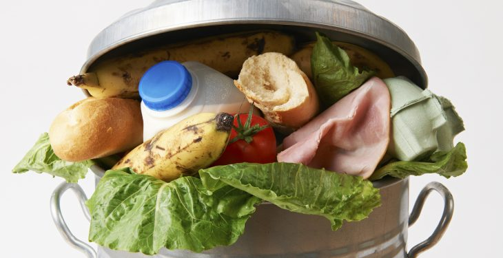 Coordination at EU Commission level is 'lacking' when it comes to food waste