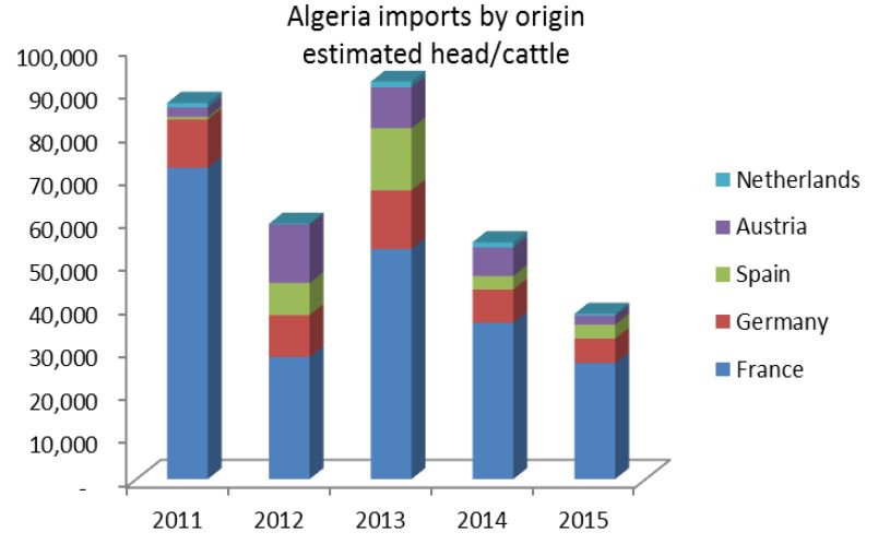 Algerian live cattle imports between 2011-2015