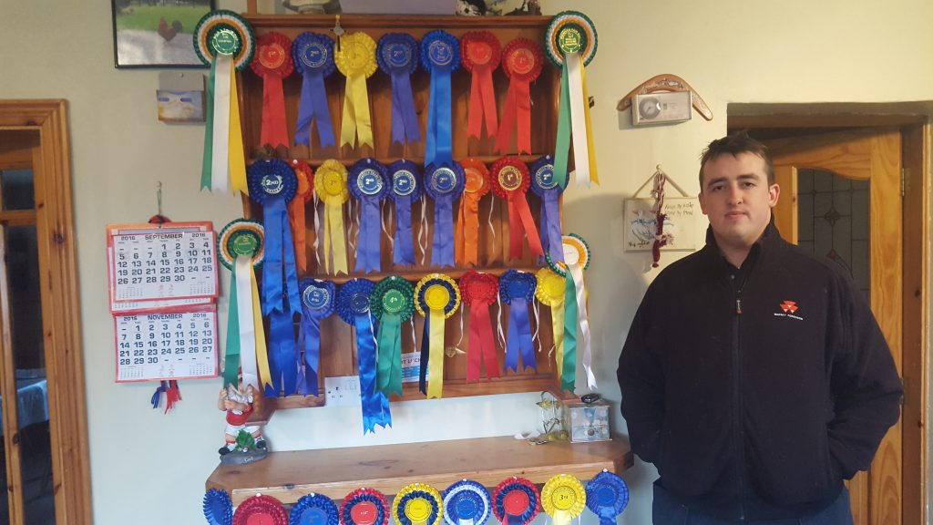19-year-old sheep farmer Darragh Cunniffe and rosettes his flock won this year