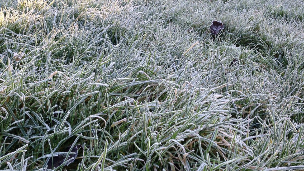 Cold unsettled conditions for coming week – Met Éireann
