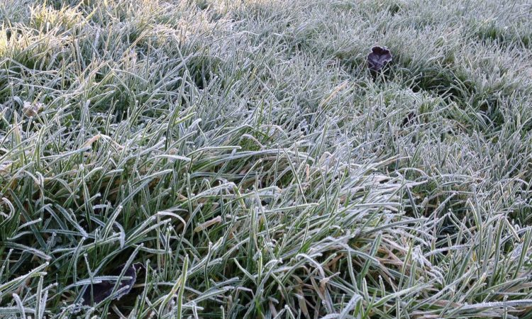 Sub-zero temperatures to hit parts of the west and north tonight