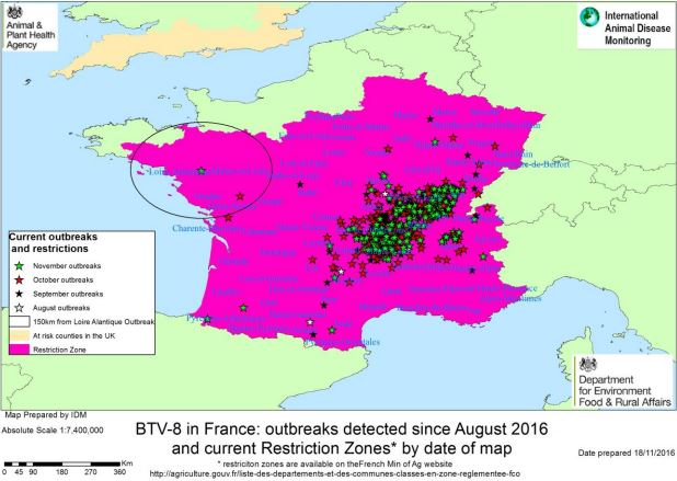 Updated restriction zone for Bluetongue disease in France.