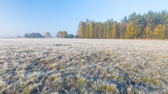 Cold frosty week in store with risk of wintry showers