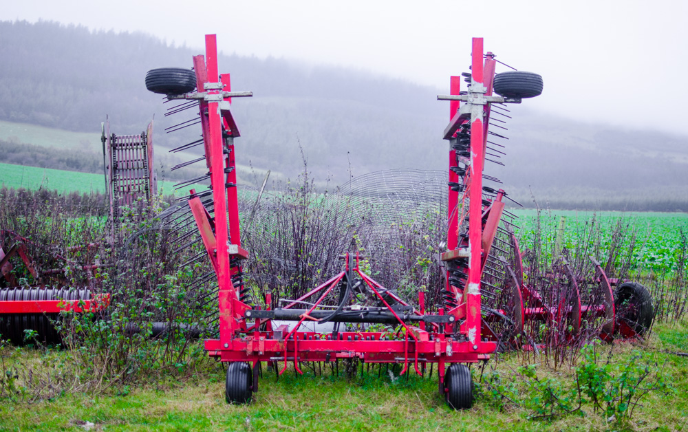 The thine harrow used when sowing forage crops on farm