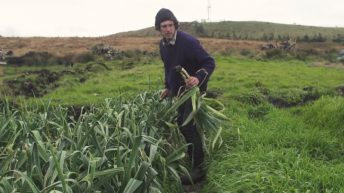 Video: From surfing around the world to organic farming in the west