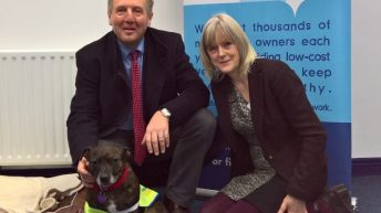 Over €2m in funding awarded to Animal Welfare Organisations