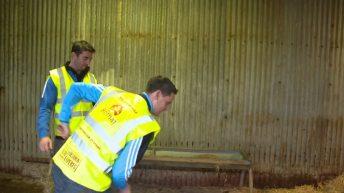 Video: All-Ireland winners visit farm where Bothar animals are hand-reared