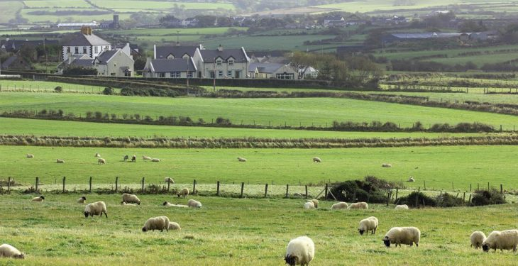 Family members return to Roscommon farmhouse
