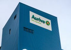 Aurivo announces unchanged milk price for October