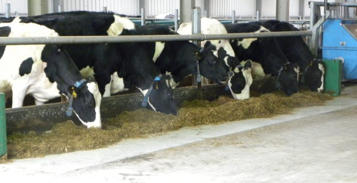 When can farmers expect Milk Supply Reduction Scheme payments to issue?