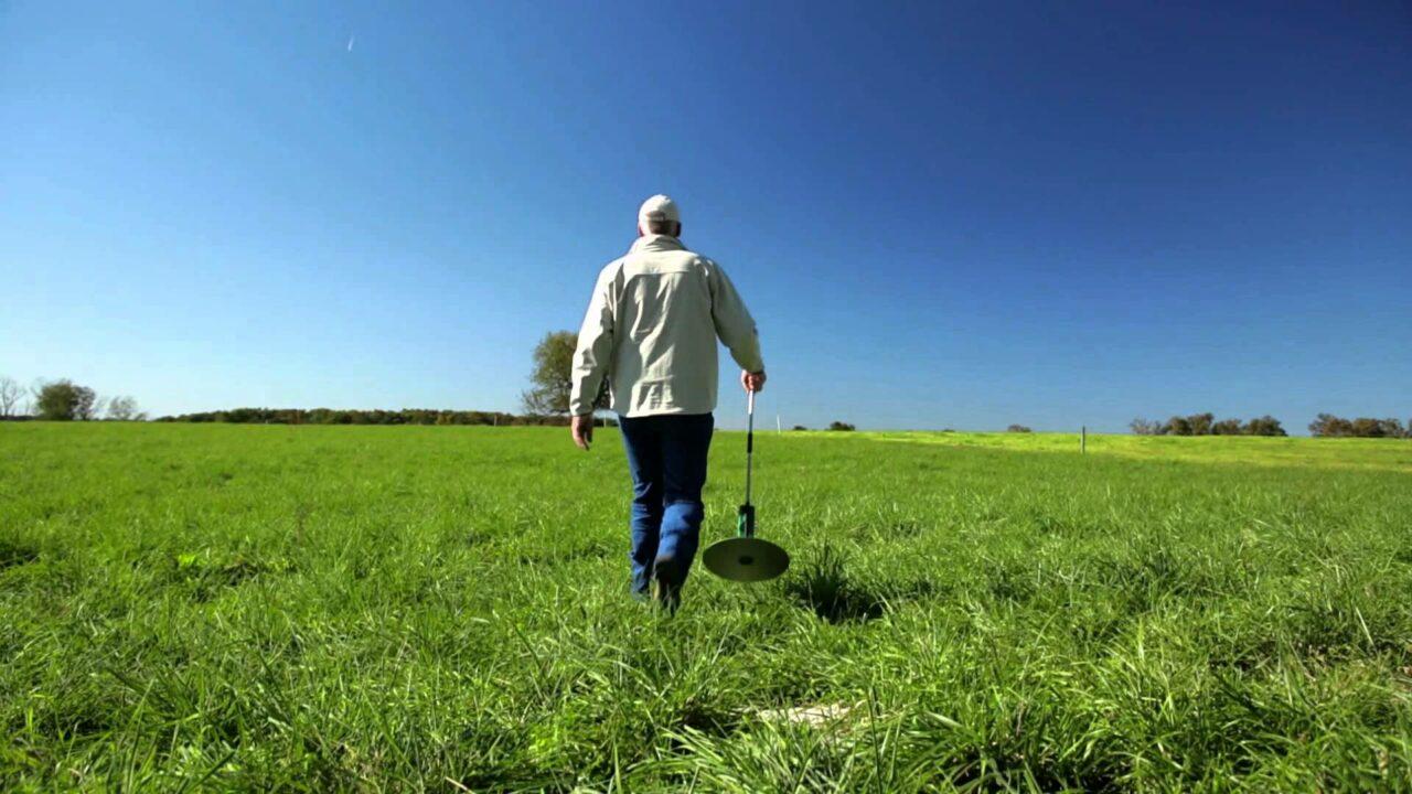 Grass growth rates reach 10kg DM/ha/day
