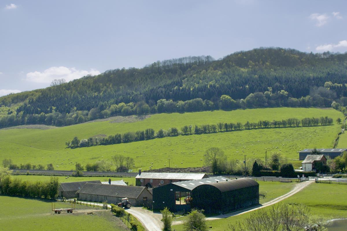 Interest Only Farm Loans