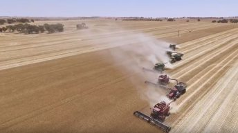 Video: Drone footage captures the scale of the Australian harvest