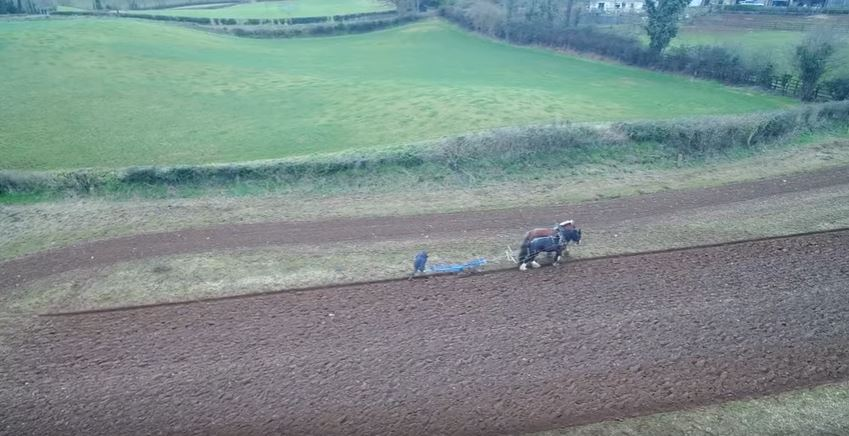 Video: Farmer ditches modern machinery in favour of horses