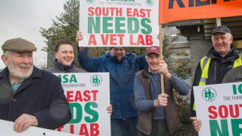 There will be 'no dilution' to services in review of Regional Veterinary Labs