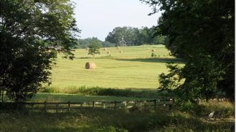13ac farm worth $450,000 up for grabs in an essay competition in the US