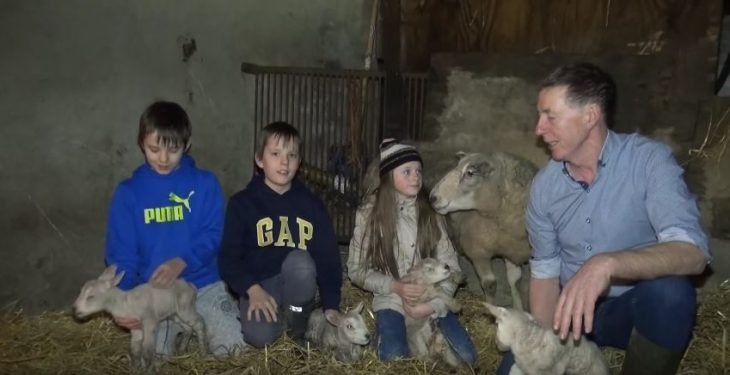 Video: Sheep farmer welcomes quadruplets following tough year