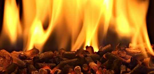 Tyrone farmer gets over £600,000 from NI heat scheme…using 13 boilers