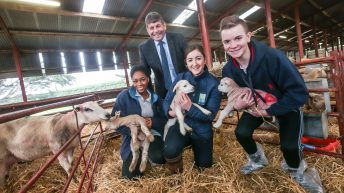 3,000 students take part in Agri Aware's Farm Walk and Talk series