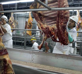 'Ban on fresh Brazilian beef exports to the US could soon be lifted'