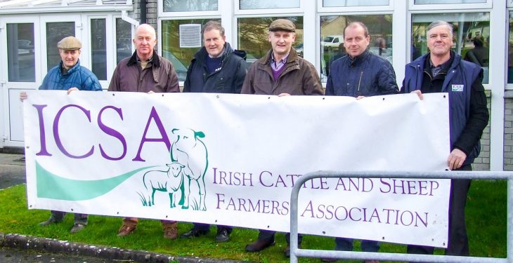 Sheep farmers to protest over EID tagging in Dublin today
