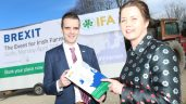 'Threat of Brexit cannot be allowed derail Food Wise 2025 targets for Irish farming' – IFA