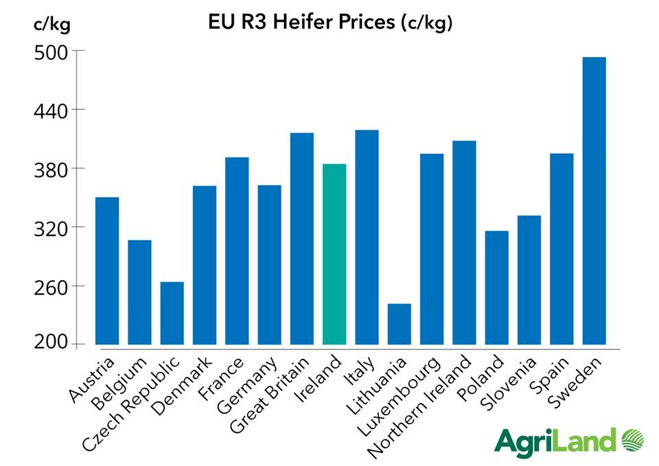 heifer prices