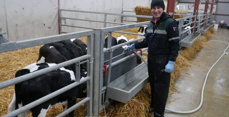Tipp dairy farmer focuses on early lactation management to drive farm success