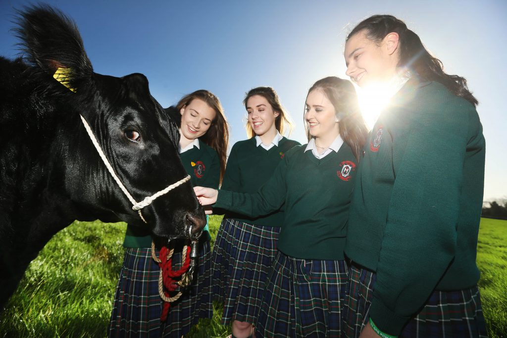 Shauna Jager, Eithne Murray, Tara Frehill and Emily Browne, from Our Lady's School, Terenure were announced as the national winners of the Certified Irish Angus Beef schools competition