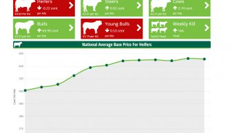 Revealing Agriland's brand new Factory Price Toolkit