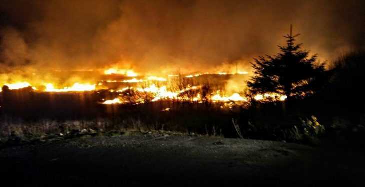 Farmers warned to be 'extra vigilant' as risk of forest fires increases