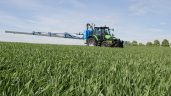 Septoria resistance will be a game changer for Ireland's grain sector