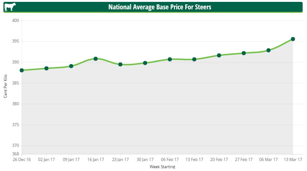 steer prices march 19